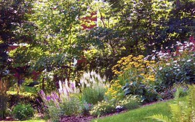 Spring Landscape Maintenance
